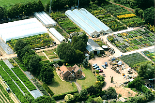Aerial view of Sandy Lane Nursery.